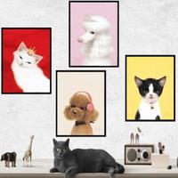 비비드정글 강아지 고양이 액자 50x70 (대형)