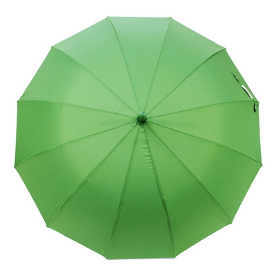 my color stroy GREEN
