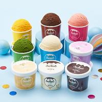낮은칼로리 아이스크림 스윗랜드 9종세트 (9일분)