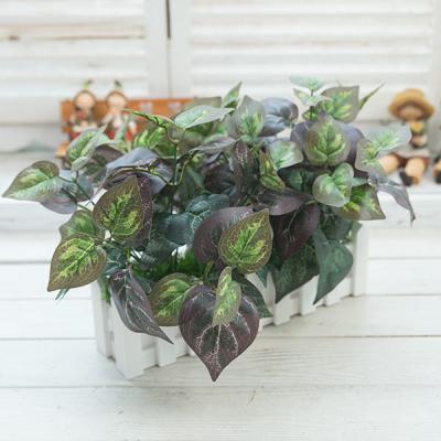 잎사귀식물울타리화분
