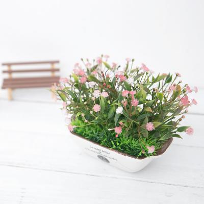 새순 안개꽃 그라탕 화분 조화