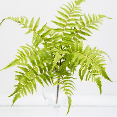 리얼 고사리 잎 부쉬 실크플라워 조화 식물
