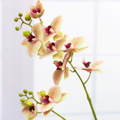 마틸드 양란 꽃 가지 85cm 실크플라워 조화