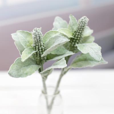 램스이어 버드 가지 33cm, 스타키스 비잔티나 실크플라워 조화꽃