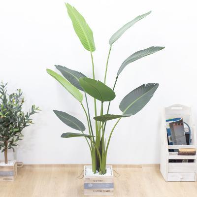 극락조조화 인조나무 150cm Tuin사각화분 대 세트