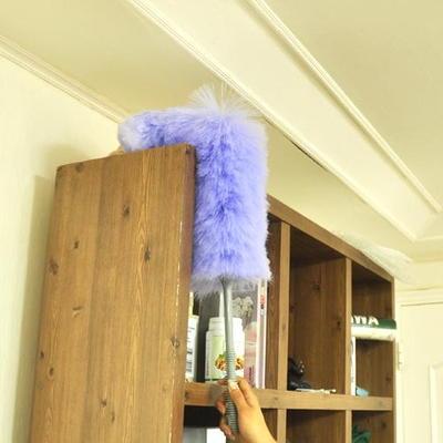 아스토니쉬 정전기 먼지 털이(대)