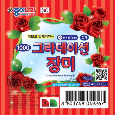 1000 그라데이션 장미
