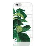 (Phone Case) 고무나무