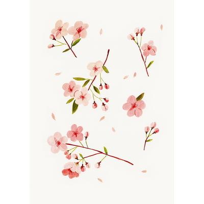 Cherry Blossom(Allnewframe)