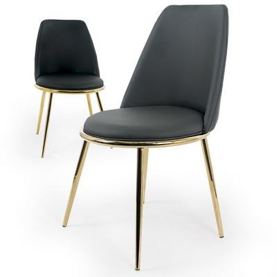 Gold Wing 골드 윙 디자인 의자