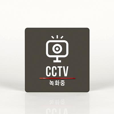 루리앤메리 014 CCTV 녹화중 포인트 안내판