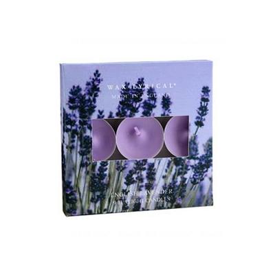 [콜로니 정품] 잉글랜드 티라이트 잉글리쉬 라벤더 - Wax Lyrical England Tealights English Lavender