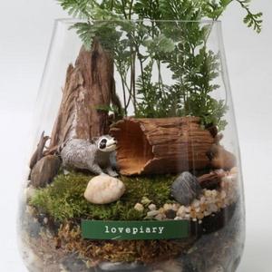 숲 속 선녀와 나무꾼(너구리)