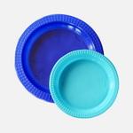 컬러릭스 접시 블루