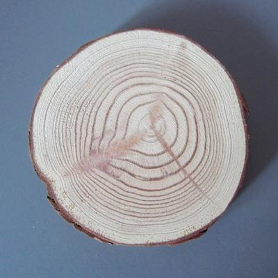 천연 나무 코스터 (소나무 슬라이스받침 캔들받침 우드 코스터)