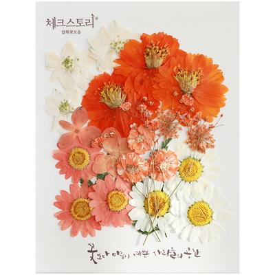 압화 꽃모음 A타입 - 오렌지향기 꽃모음