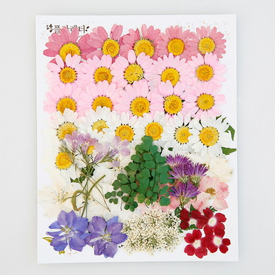 압화 꽃모음 C타입 - 신부 꽃모음