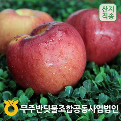 무주 반딧불 신선한 홍로 꿀사과 3-10kg