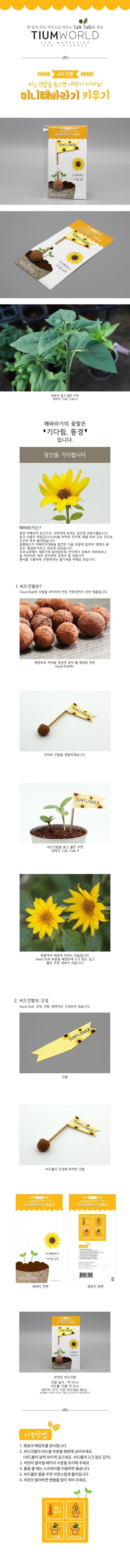 씨드깃발-미니해바라기 - 틔움세상, 1,500원, 새싹/모종키우기, 씨앗