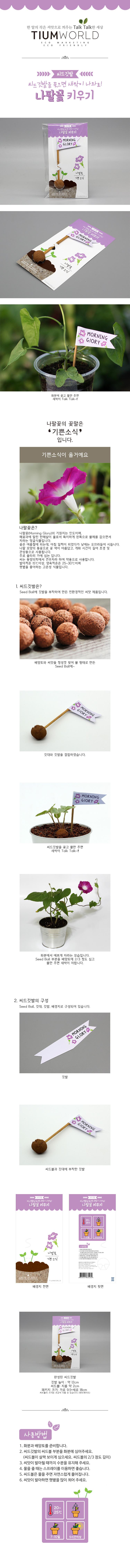 씨드깃발-나팔꽃 - 틔움세상, 1,500원, 새싹/모종키우기, 씨앗