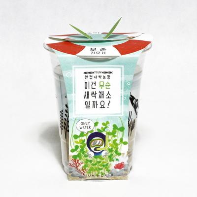 한컵새싹농장_무순키우기