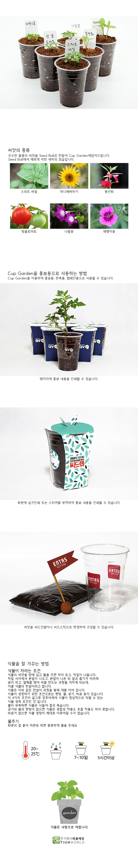컵가든_방울토마토 - 틔움세상, 3,000원, 새싹/모종키우기, 새싹 키우기