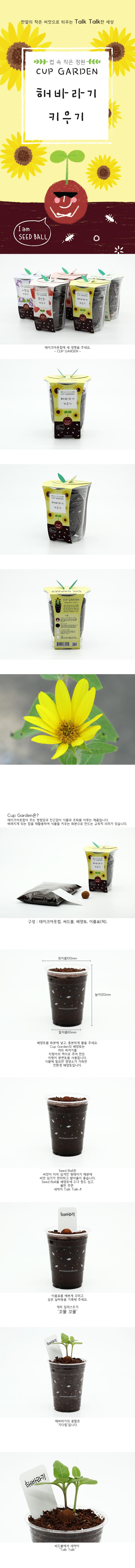 컵가든_미니해바라기 - 틔움세상, 3,000원, 새싹/모종키우기, 새싹 키우기