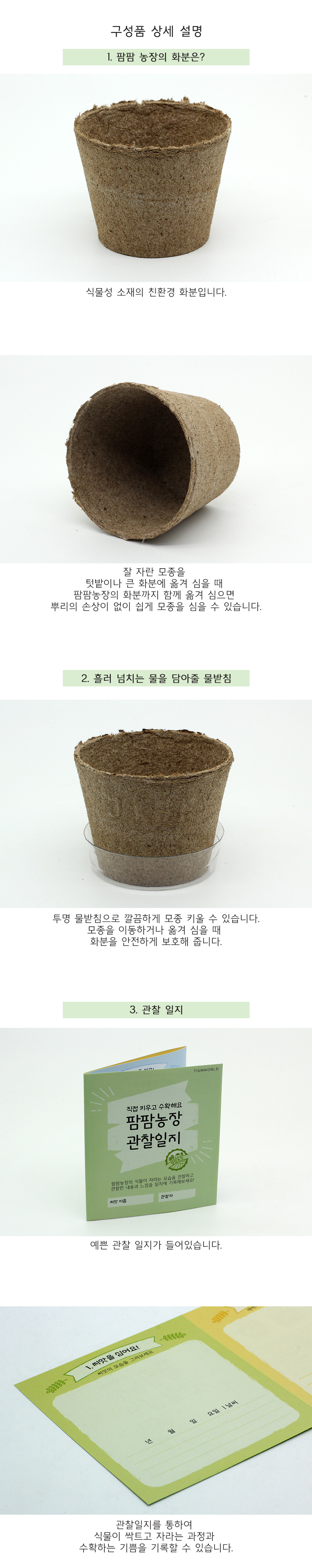 팜팜농장_강낭콩 모종키우기 - 틔움세상, 3,000원, 새싹/모종키우기, 새싹 키우기