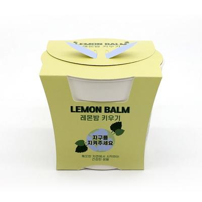 면역력에 좋은 레몬밤 키우기세트