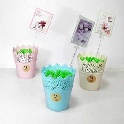풀초 심플Small 자연가습기 3색