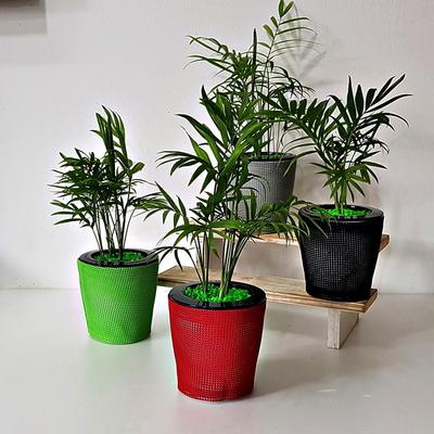 공기정화식물 수경재배 가습화분 심플 테이블야자