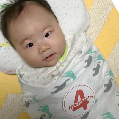 Baby months sticker 베이비 포토 먼스 스티커