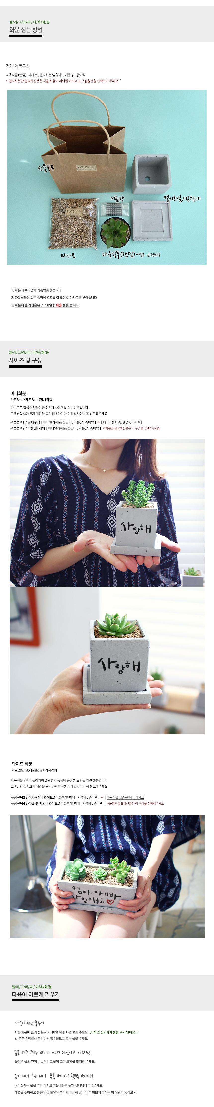 상견례선물 캘리그라피 미니화분 - 러브앤땡스, 18,000원, 허브/다육/선인장, 다육/선인장