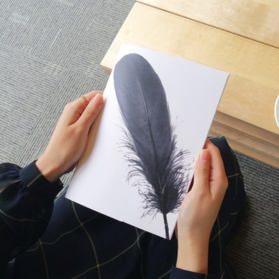 Monotone Series - Type D - One Feather
