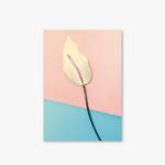 Garden Series - Type B - Flower-2