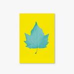 Garden Series - Type D - Leaf-2