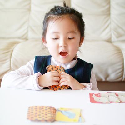 이부 애니멀루미 카드게임 / 5세 이상, 2-4인, 유아, 가족