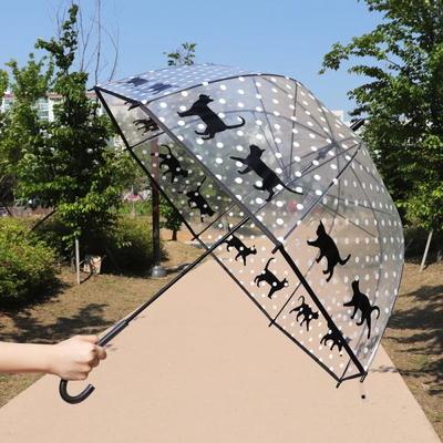 캣시리즈 돔형 투명우산 도트