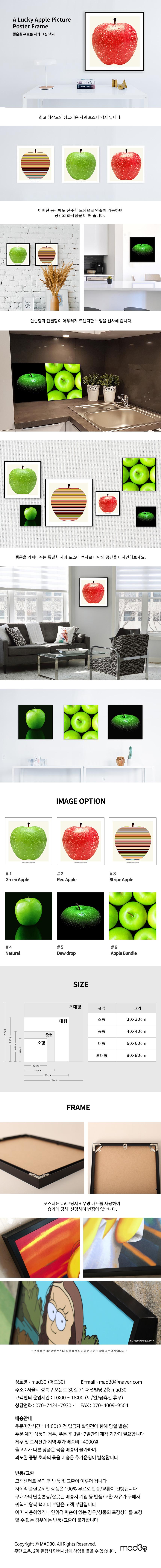 행운의 사과 그림 액자 (블랙메탈액자) - 매드30, 30,900원, 액자, 벽걸이액자