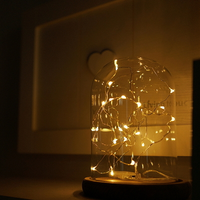 LED 감성조명 라인듀 건전지조명 C2 L2