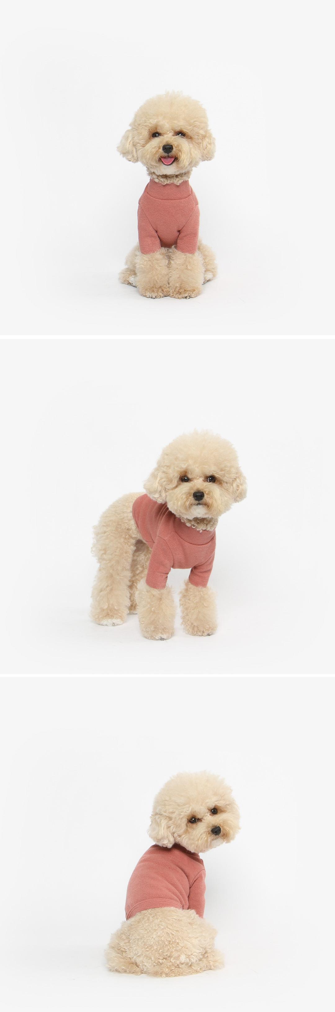 강아지 크롭 목폴라 티셔츠 겨울옷 (버건디) - 투스투스, 17,500원, 의류/액세서리, 의류