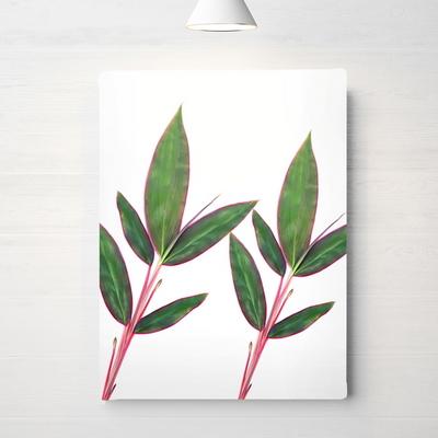 RYMD 북유럽 인테리어 액자 식물 핑크 리프 포스터