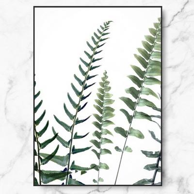 RYMD 북유럽 인테리어 액자 식물 포스터 어텀 퍼른