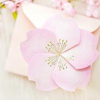 벚꽃카드 YD-21