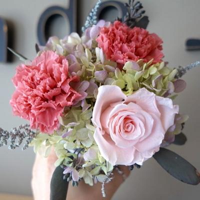 핑크 카네이션 꽃화분