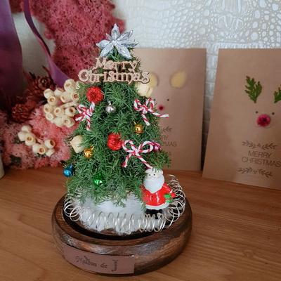 크리스마스 트리 LED유리돔-뉴트로 크리스마스선물