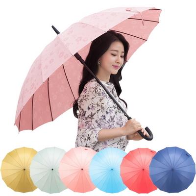 비가 오면 꽃이 피는 사쿠라 자동장우산