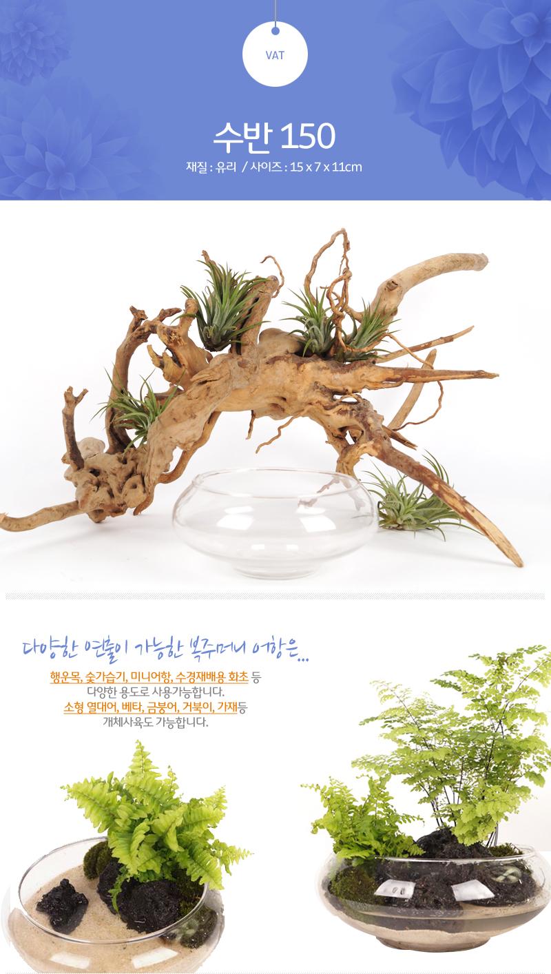 수반 유리어항 - 150 (금붕어 수경 식물 미니어항) - 미미네아쿠아, 3,500원, 수조/어항, 수반/원형