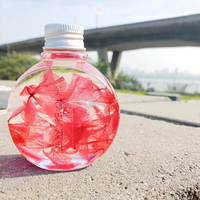 원형 분홍 수국 하바리움 만들기 패키지 DIY