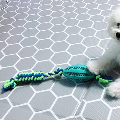 강아지 터그놀이 공놀이 이갈이 장난감 럭비터그볼